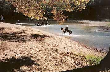 horses wading through river - Missouri Vacations
