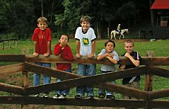 boys on a fence - Missouri Vacations