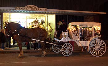 horse pulling white carriage - Missouri Vacations