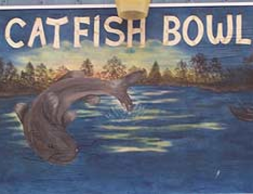 Catfish Bowl