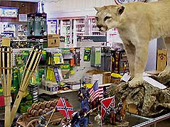 sporting goods store interior - Missouri Vacations